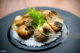 escargot cuisiné escargot edible snail cuisine stock photo getty images