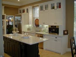 Glass Door Kitchen Cabinets Kitchen Astonishing Small Kitchen Decoration Using White Granite