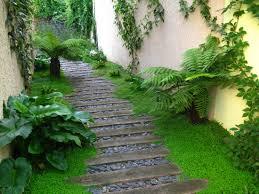 terrasses et jardin prairie fleurie aménagement d u0027un jardin à montreuil fougère