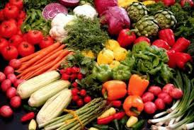 top choices for brain food healthy eating sf gate