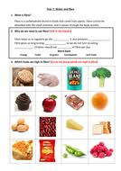 worksheet on fibre and water by scampbell1993 teaching resources