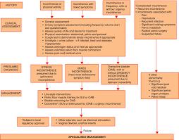 eau guidelines on urinary incontinence actas urológicas