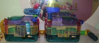 Hamster Cages Petsmart One More Crittertrail One Supplies U0026 Accessories Hamster