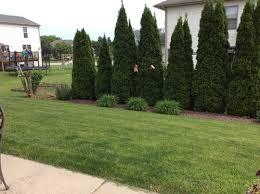 garden design garden design with backyard privacy landscaping