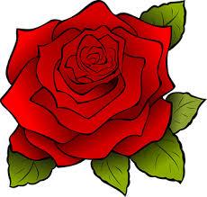 Flower Image Rose Flower Free Pictures On Pixabay