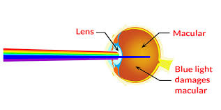 blue light and macular degeneration about us parksplay anti blue light eyewear technology for kids