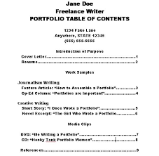 How To Build A Professional Resume How To Make A Portfolio Table Of Contents Portfolio Tips