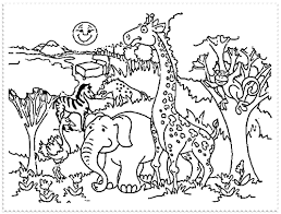 cool design zoo coloring pages animals 224 coloring page