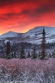 brilliant colors of denali national park alaska wallpapers best 25 sunset park movie ideas on pinterest sunrise park lee