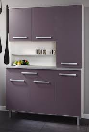 Purple Kitchen Designs by Design Wonderful Divine Of Modern Small Kitchen Design And