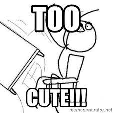 Table Throw Meme - too cute flip table meme meme generator