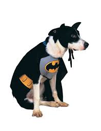 dog clothes for halloween amazon com dc comics pet costume classic batman medium pet