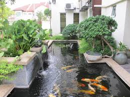 garden fish ponds designs backyard design ideas