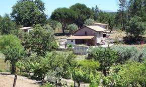 Haus Zum Verkaufen Privat Leben Auf Der Quinta Im Schönen Zentrum Portugals Mit Grossem Areal