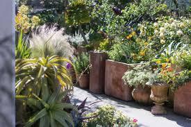 garden visit my driveway oasis in half moon bay california