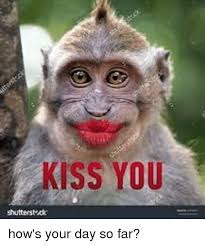 kiss you shutterstruck how s your day so far meme on sizzle