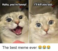 Your Funny Meme - haha you re funny i ll kill you last the best meme ever