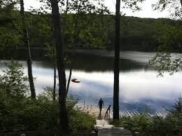 free images man tree nature forest deck lake river summer