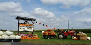 Pumpkin Patch St Louis Mo by Don U0027t Miss These 10 Great Pumpkin Patches In Iowa This Fall