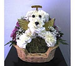 Dog Flower Arrangement All Dogs Go To Heaven In San Diego Ca The Floral Gallery