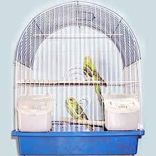 Birds Home Decor Home Decor Birds N Aquarium Birds 4 Gift