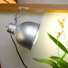 Grow Lights For Plants Wonderlite Indoor Grow Light For Orchids U0026 Indoor Plants