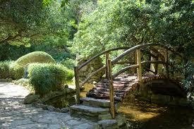Zilker Botanical Garden File Bridge Isamu Taniguchi Japanese Garden Zilker Botanical