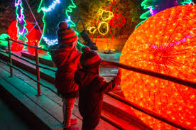 Houston Zoo Lights Coupon La Zoo Lights Discount Tickets 7 50 Kids Under 2 Free Any Tots