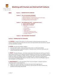 free standard operating procedure template word 2010 edit online