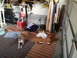 Bathroom In Garage Dog Door Project