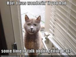 Ceiling Cat Meme - the whiskeratti ceiling cat