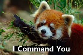 Red Panda Meme - red panda command you technoviking know your meme