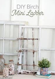 DIY Birch Mini Ladder Decor Step by Step Consumer Crafts
