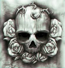 53892 best skull bones images on skulls
