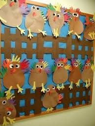 chicken display classroom displays class display animal