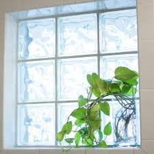 five easy care indoor plants u2013 al fresco