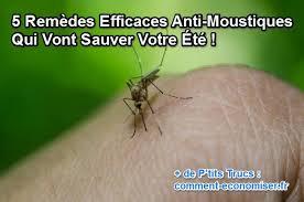 moustique dans ma chambre 5 remèdes naturels anti moustiques vraiment efficaces