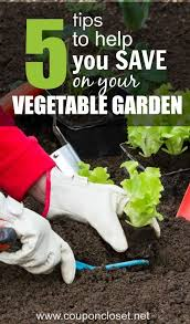 327 best a frugal lawn and garden images on pinterest gardening