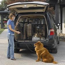 Truck Bed Dog Kennel Amazon Com Solution Series Double Door Folding Metal Dog Crate