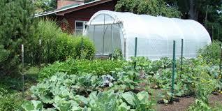 Vegetable Garden Plot Layout by Vegetable Garden Layout Mistakes To Avoid Garden Culture Magazine