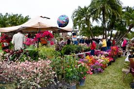 Fit Botanical Gardens Florida Tech Botanical Set For Saturday March 7 Florida