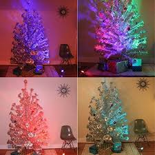 vintage silver tree with color wheel rainforest