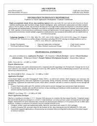 Good Programmer Resume Database Programmer Resume Huanyii Com