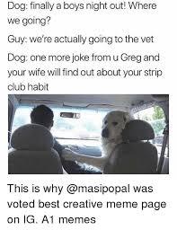 Best Meme Page - 25 best memes about vet vet memes