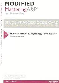 Human Anatomy And Physiology Marieb Hoehn Human Anatomy Physiology Modified By Elaine Marieb Abebooks