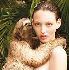 Make A Sloth Meme - fashion the smitten written kitten