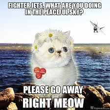 What You Doing Meme - fighter jets what are you doing in the peaceful sky funny war meme image