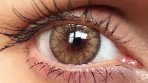 cheap halloween contact lenses uk desio caramel brown coloured contact lenses close up hd