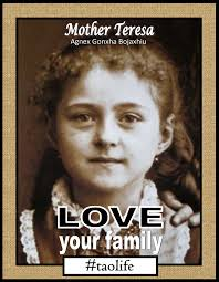 Love And Family Quotes by Love Your Family Quotes Like Success