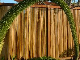 exterior beautiful bamboo fencing with antique plants for gate